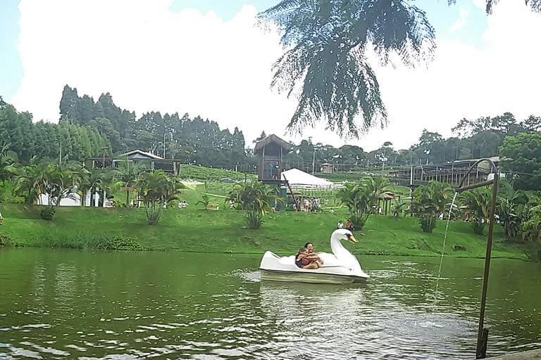 Pedalinho no lago do Restaurante Quinta do Olivardo